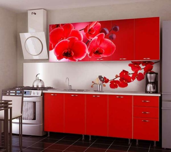 Кухня с рисунком «РН2»